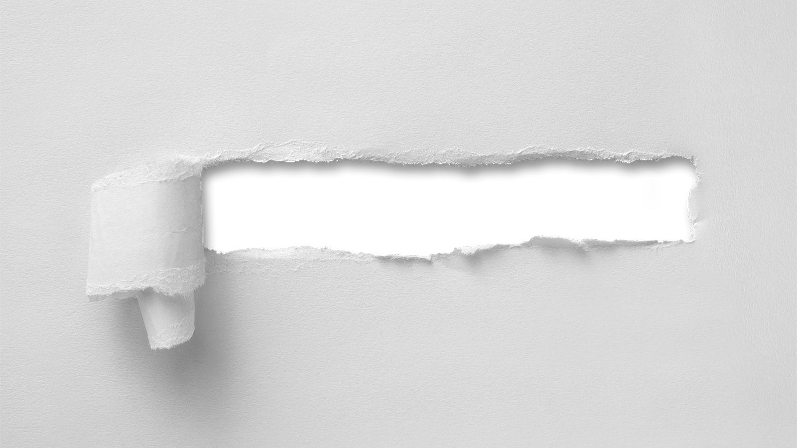 Successful Tips for B2B White Papers